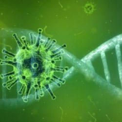 Mercurius en Corona-virus